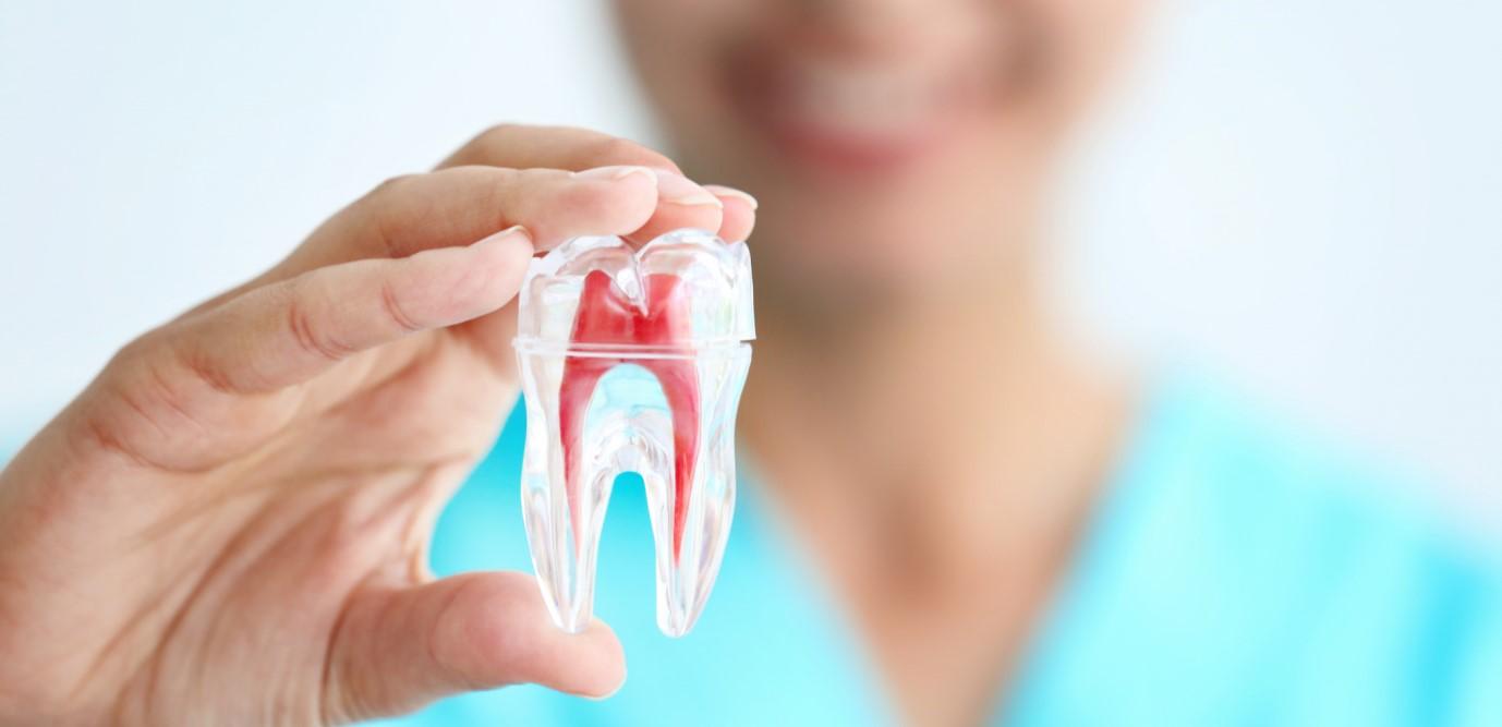 علائم هشدار دهنده نیاز به درمان ریشه دندان